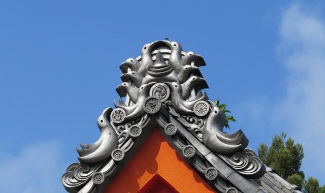 熊野那智大社のイソヒヨドリ